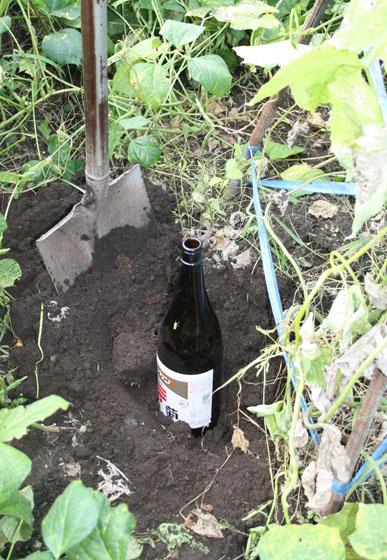 瓶を土中に埋める