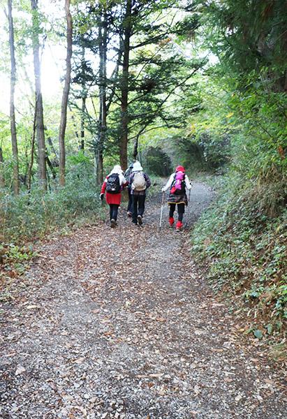 登山道を歩き始める